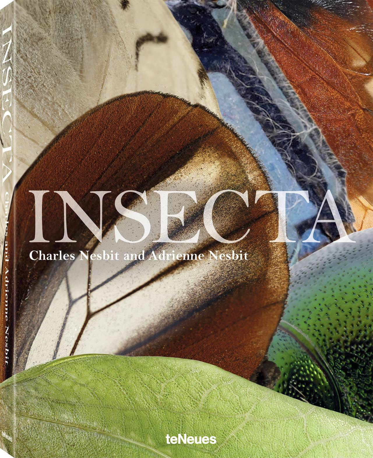 © INSECTA by Charles Nesbit and Adrienne Kaufman Nesbit, published by teNeues, www.teneues.com, Photo © 2017 Charles Nesbit and Adrienne Kaufman Nesbit. All rights reserved.