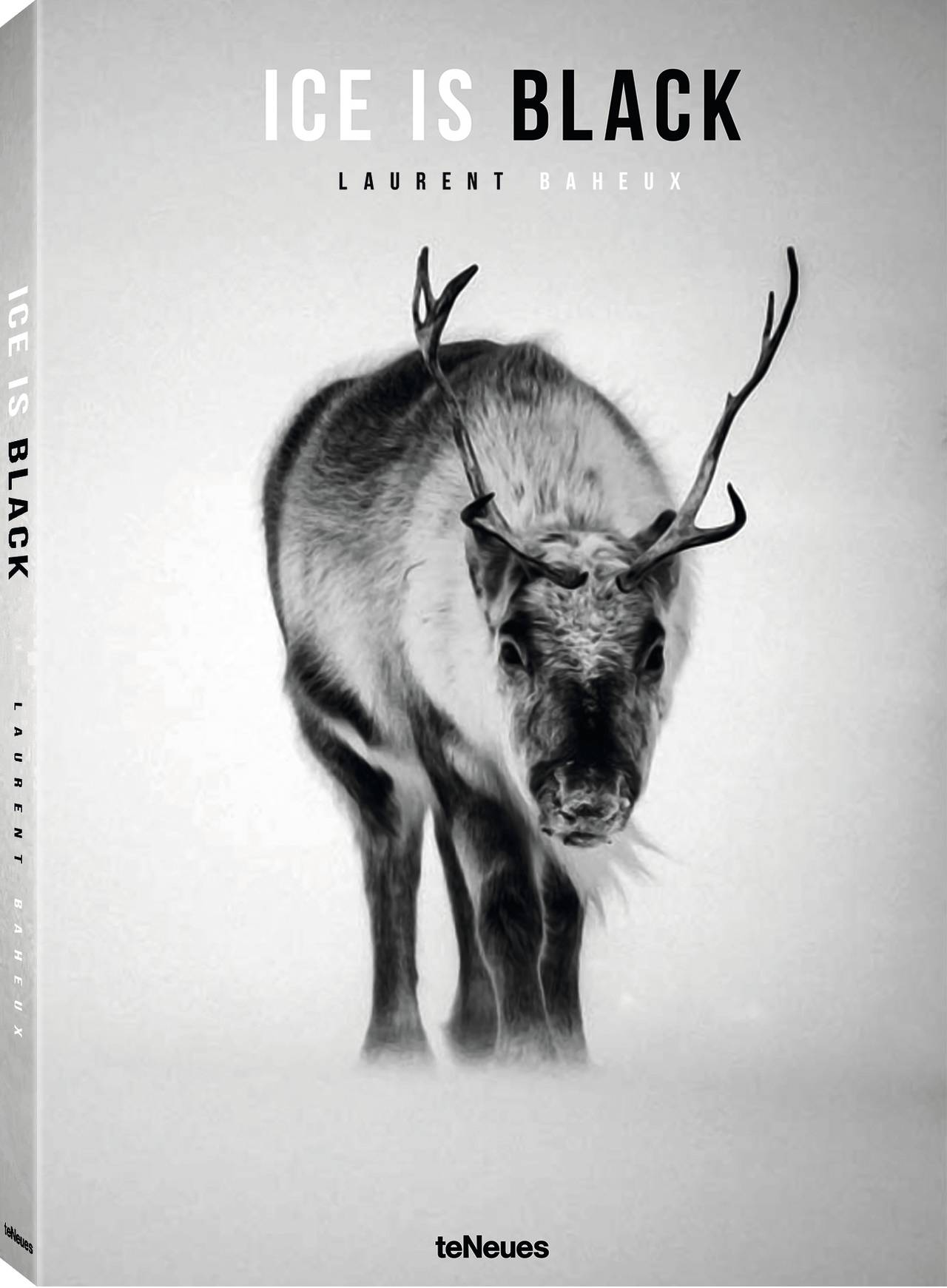 Ice is Black by Laurent Baheux, published by teNeues, www.teneues.com, Reindeer through the snow, Svalbard 2014, Photo © Laurent Baheux
