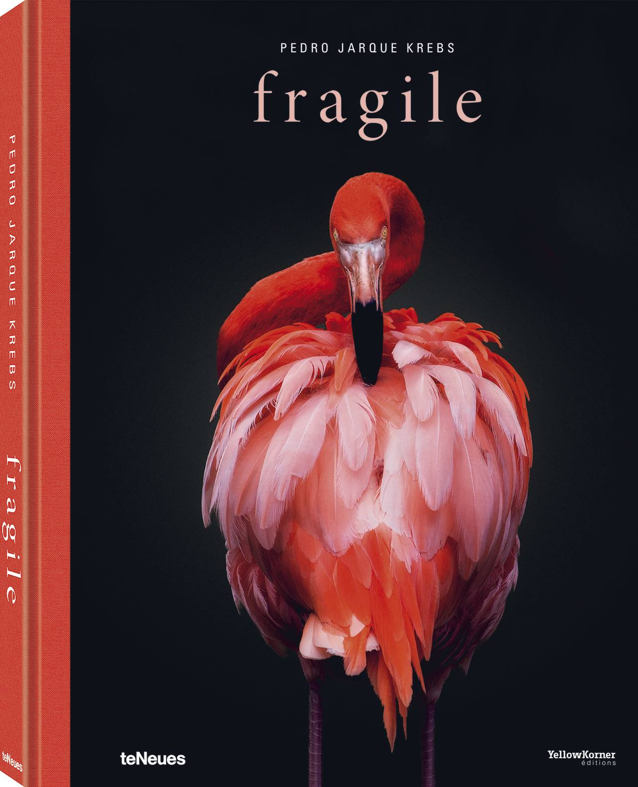 © fragile by Pedro Jarque Krebs, published by teNeues, www.teneues.com, American flamingo, Photo © Pedro Jarque Krebs. All rights reserved.