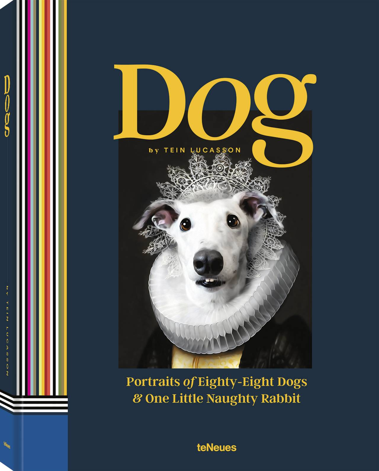 © Dog - Portraits of Eighty-Eight Dogs & One Little Naughty Rabbit by Tein Lucasson, published by teNeues, www.teneues.com, Salty, Photo © 2020 Tein Lucasson. All rights reserved.