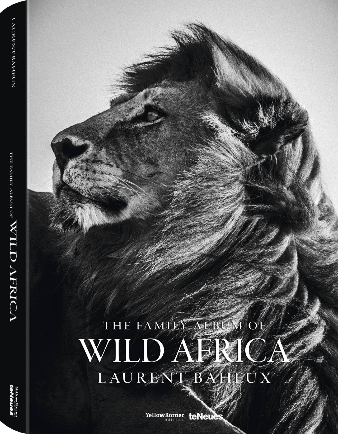 © The Family Album of Wild Africa by Laurent Baheux, published by teNeues and YellowKorner, www.teneues.com, www.yellowkorner.com. Photo © Laurent Baheux, www.laurentbaheux.com