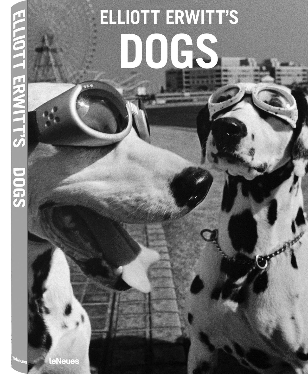 © Elliott Erwitt's Dogs, published by teNeues, www.teneues.com, Yokohama, Japan, 2003, Photo © Elliott Erwitt/Magnum.